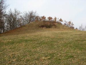 La motte castrale, sommet des terres habitées de la commune de Comps.